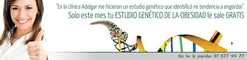 Estudio genético de la obesidad