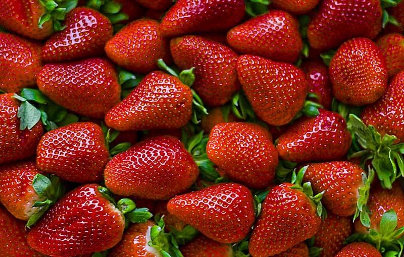 fresas-clinica-adelgar