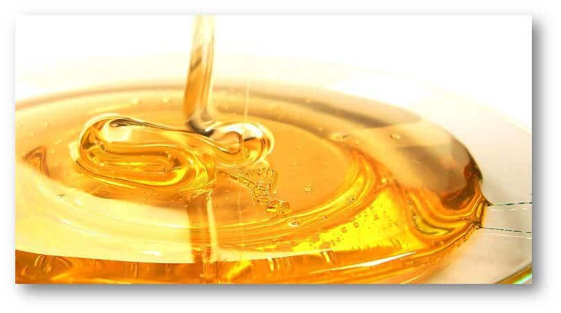miel-adelgar