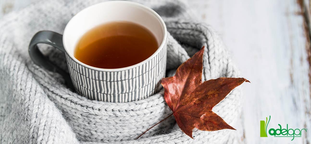 platos de otoño saludables