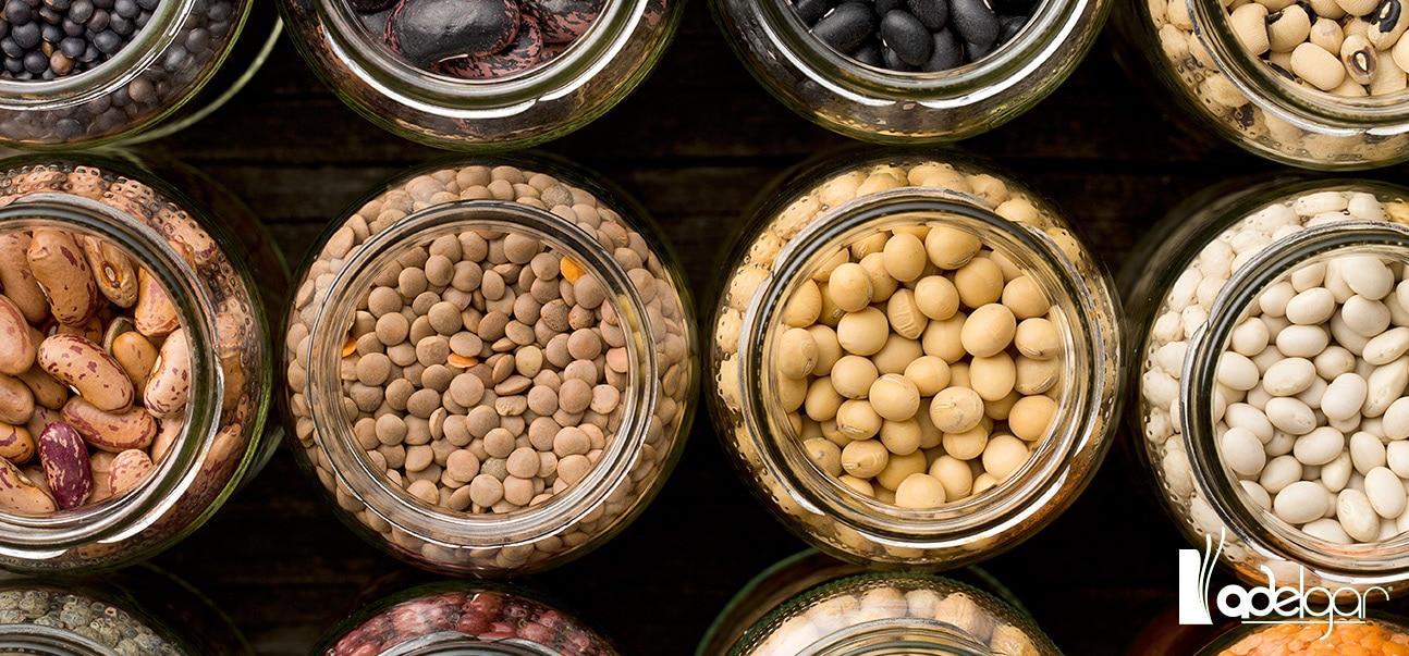 Las legumbres son indispensables en cualquier dieta. ¿Verdadero o falso? Descúbrelo en este artículo.